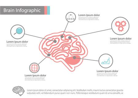 iconography: infographics vector brain design