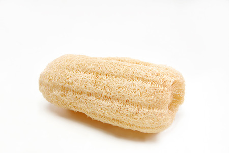 Natural sponge shower in white background
