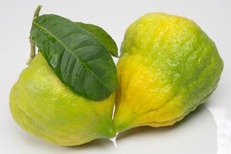 Citron in white background