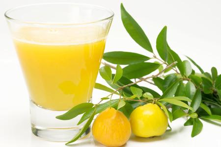 Brazilian fruit called Uvaia juice - (Eugenia uvalha Cambess) Imagens