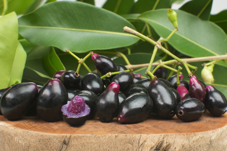 Exotic fruit Syzygium cumini called in Brazil as jamelão in wood background with one cut