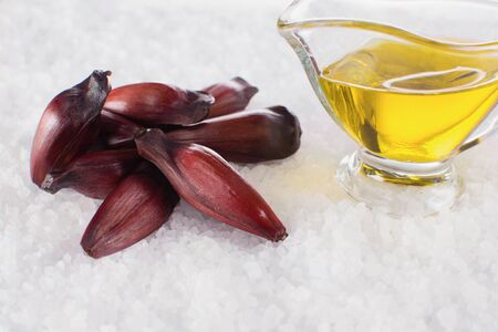 Brazilian Pinion fruit and olive oil in coarse salt background