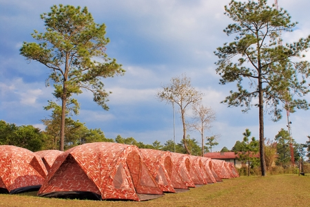 phukradueng: tents arrange in a row for tourist at Phukradueng National Park, Thailand Stock Photo