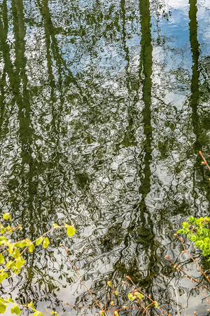 Abstract reflection in spring Stockfoto