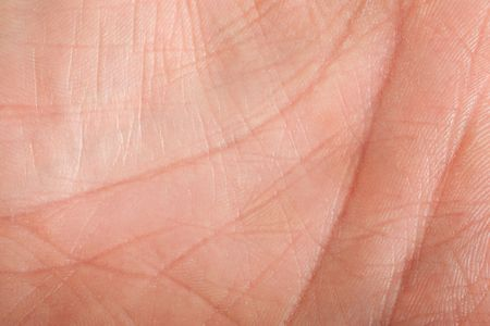 Human skin (inner surface of a male hand)
