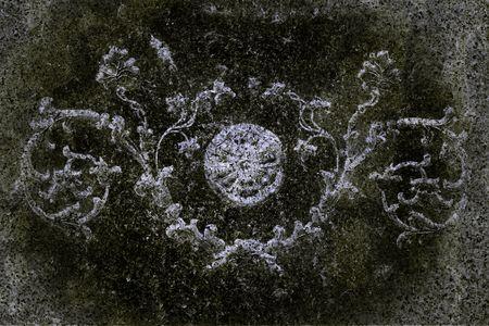 flatly: Beautiful grunge Background with a botanic ornament