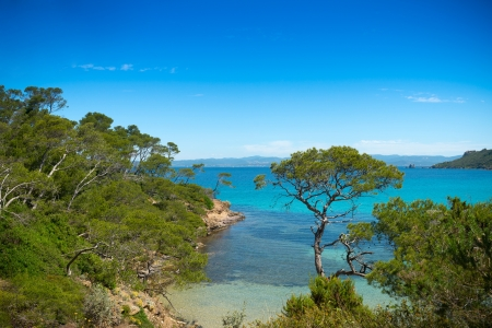Idyllic beach, paradisiac southern landscape, bay on the island Porquerolles in  France Standard-Bild