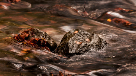 water flowing: water stream on rocksand leaves, flowing soft blur. autumn colors
