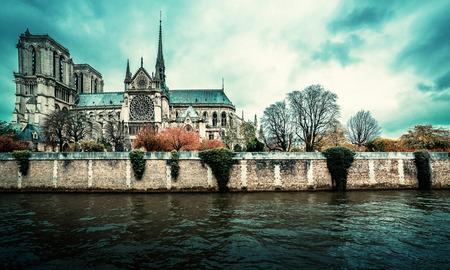 Parijs stadsgezicht. Notre Dame gotische kathedraal in de winter dag. Bleach vintage effect Stockfoto