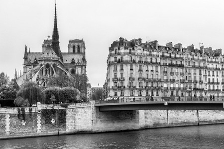 Paris, Notre dame cathedral and building near Seine river. cityscape