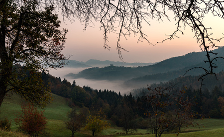 Autumnal foggy sunrise on the mountain and the valley. View through the branches of trees