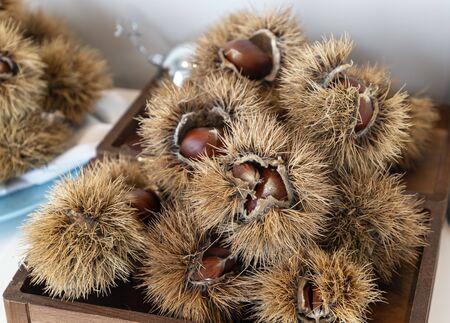chestnut curls. fall, winter healthy food Zdjęcie Seryjne