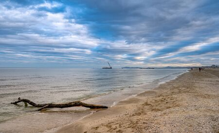 sand beach landscape at sunset.Sea horizon with trunk on the shore. Panoramic view with amazing blue sky Zdjęcie Seryjne