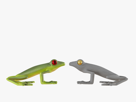 Green and gray frog look at each other on a white background 3d rendering