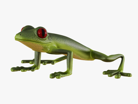Green frog side view on white background 3d rendering Stock Photo
