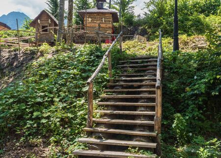 Old wooden steps in a green forest in the mountains Stok Fotoğraf