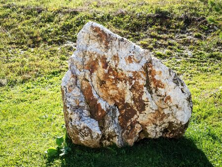 Massive spotted stone lies on a lawn with green grass