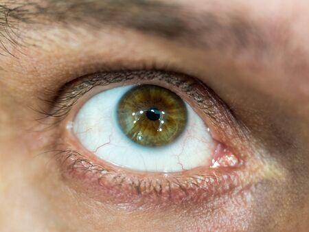 Close-up photo with focus in the center of the brown eye of a man looking upwards with highlights in the pupil Banque d'images