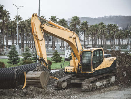 Crawler excavator is working in a gravel on the street against the background of palm trees