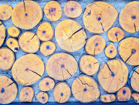 Decorative panel with pattern of round log slices of different sizes 版權商用圖片