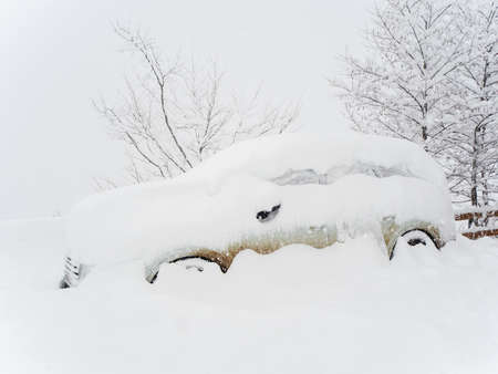A car heavily covered with snow stands next to trees on a cloudy day with heavy snow
