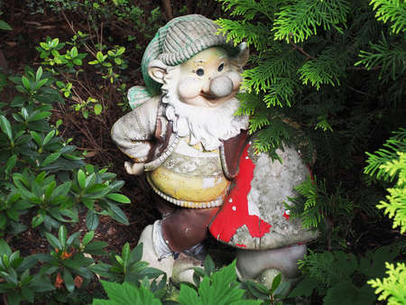 A ceramic figurine of a gnome with peeling paint stands in the bushes. Garden decor