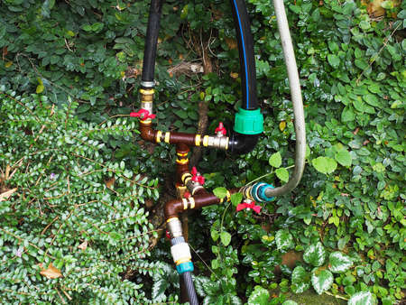 Rusty pipe with valves and hoses among green wet plants. Irrigation system