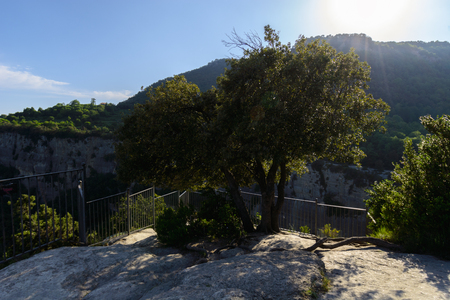 Summer scene of three trees growing above rocks just before a viewpoint,s fence with a bright suns rays at the top in Catalonia, Spain