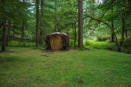 A lonely hut made of woods alone in a green forest Reklamní fotografie