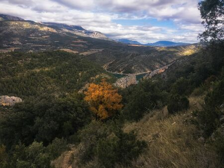 A wide angle paradisaical landscape of forest, mountains & an orange tree under heavy clouds in Catalunya, spain