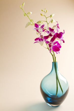 Pink and white orchids in a blue glass vase on a cream background photo