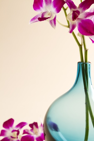 Cropped stylised image of a blue glass vase with pink orchids with background space for text