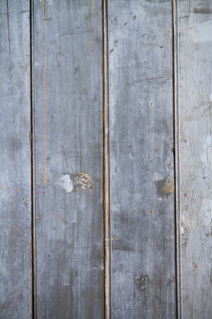 old rustic grngy paling vintage fence background Stock Photo