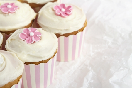 Pink and white striped cupcakes on white paper background