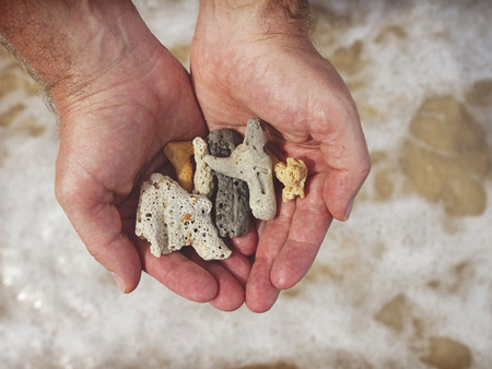 Mans hands holding broken coral at the beach Stock Photo