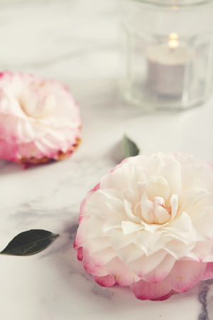 Tea light candle with camellia flower background photo