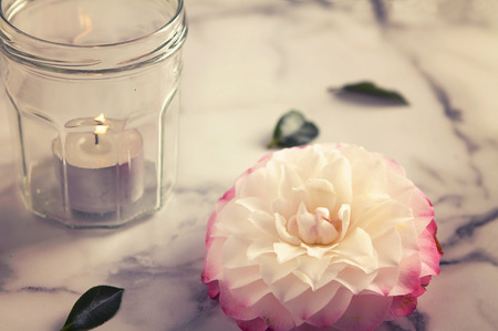tea party: Vintage feel camellia flower and jar candle on marble