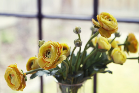 Close up of fake yellow flowers roses horizontal Stock Photo