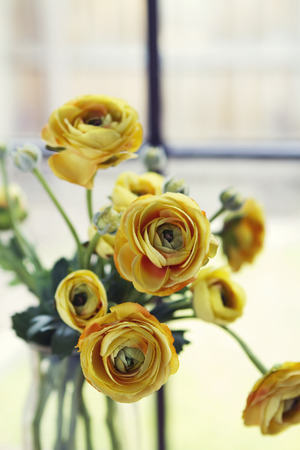 Close up of vintage yellow roses flowers vertical Stock Photo