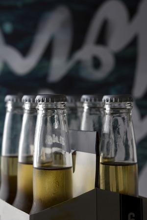 6 pack beer: Six pack of craft beer bottles with interesting dark background