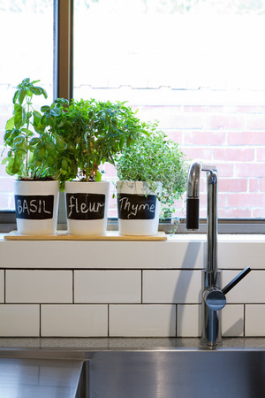 Pots of herbs on a contemporary kitchen window sill vertical