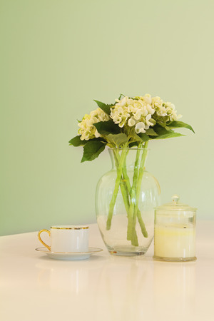 hues: Soft green pastel hues of vase of flowers, teacup and candle on a kitchen bench