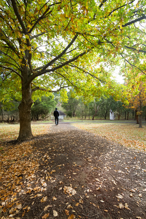 walking alone: Man walking alone on a country path during autumn Stock Photo