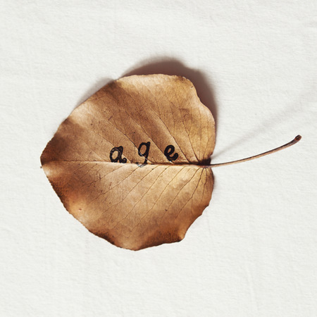 exfoliate: Word age stamped on to a fallen dead autumn leaf to represent the cycle of life