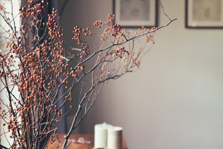room wall: Dried berry stick floral arrangement in home interior horizontal