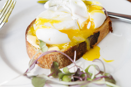 free range: Gourmet poached free range eggs on toast with dripping yolk closer view