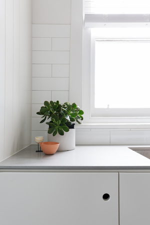 Vignette of pot plant and ornaments on classic kitchen benchtop