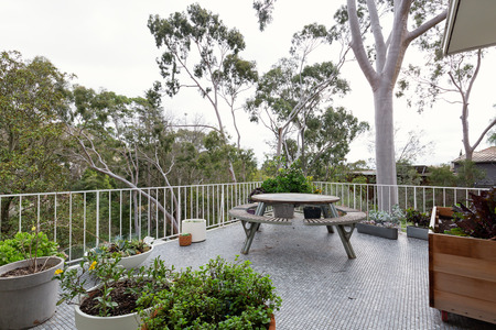 century plant: Beautiful view of tree tops from patio in modern Australian suburban home