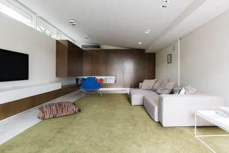 mid century: Modern living room with custom walnut cabinetry and large green wool rug Stock Photo