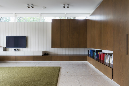 built in: Modern living room with walnut built in cabinets and tv
